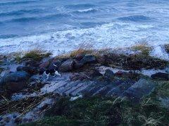 Orkanen Egon besøger stranden